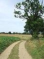 Farm track in Belchamp Walter, Essex.jpg