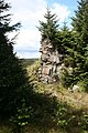 Felecia Crag, Wark Forest - geograph.org.uk - 445866.jpg