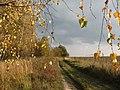 Field Road - panoramio.jpg
