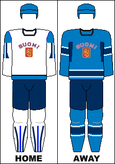 Finland national hockey team jerseys - 2010 Winter Olympics.png