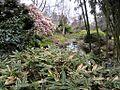 Finnerty Gardens, Victoria (7051785397).jpg