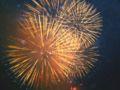 Firework sweden1.jpg