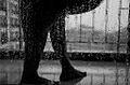 First Rains.jpg