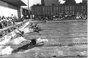 1965 Maccabiah Games - The 100 m backstroke competition at the Games.