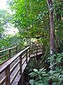 Flickr - archer10 (Dennis) - Belize-0955.jpg