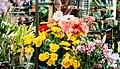 Flowers (16227994462).jpg