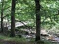 Footbridge over Afon Mawddach at Y Ganllwyd - geograph.org.uk - 489034.jpg
