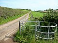 Footpath and farm track - geograph.org.uk - 1431697.jpg