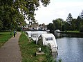 Footpath beside the Ouse - geograph.org.uk - 1022296.jpg