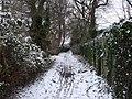Footpath from Beulah Rd to Heol-y-Bont, Rhiwbina, Cardiff - geograph.org.uk - 1148968.jpg