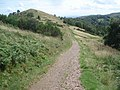 Footpath leading down from Pinnacle Hill - geograph.org.uk - 526554.jpg