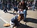 Frat boy dog (2957635356).jpg