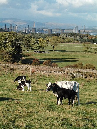 Polmont - Farmland in Polmont looking towards Grangemouth industry