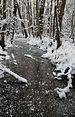 Frozen stream Enäjärvi, Pori.JPG