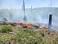 Fuller Fire 01.jpg