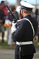 Fusilier-IMG 9068.JPG