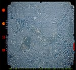 GSI CKT20015X-C5-20 20011231.jpg