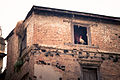 Gallo mirando por la ventana (8513894734).jpg