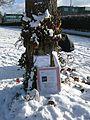 Gedenkbaum an der Dreisam in Freiburg-Waldsee, in der Nähe des Fundortes.jpg