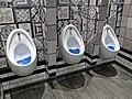 Gents toilet urinals, St Pancras International, London, England.jpg