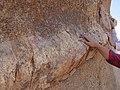 Geologic formations at Skull Rock (29074898265).jpg