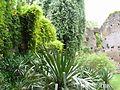 Giardino di Ninfa 26.jpg