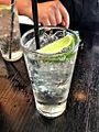 Gin and tonic 20121122.jpg