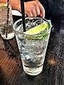 Gin and tonic 20121122.jpg