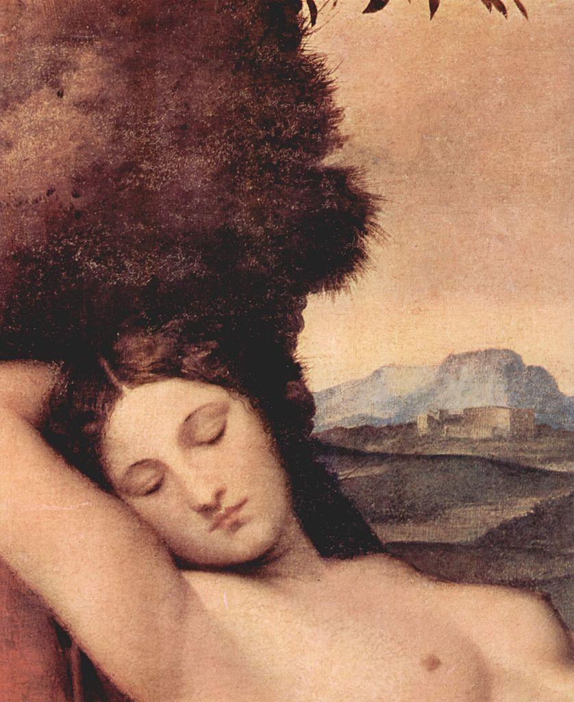 http://upload.wikimedia.org/wikipedia/commons/thumb/c/c9/Giorgione_056.jpg/838px-Giorgione_056.jpg