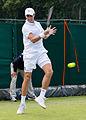 Giovanni Lapentti 2, 2015 Wimbledon Qualifying - Diliff.jpg