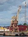 Giraffe crane, Stockholm ( 1090762).jpg