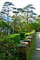 Glenveagh National Park - Castle Courtyard - geograph.org.uk - 1188724.jpg