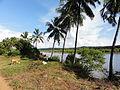 Goa 2010 (5224250099).jpg