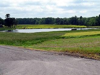 Locust Grove, Orange County, Virginia - Gold Dale