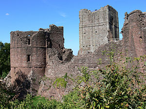 A ruined castle, with a circular keep on the left of the picture, a partially collapsed wall in the middle and another tower just visible on the right; in the background is a square keep, in the foreground green plants and vegetation.