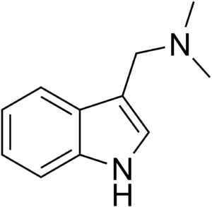 Gramine - Image: Gramine Structure
