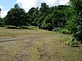 Grassy area - geograph.org.uk - 222078.jpg