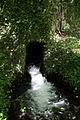 Graz Umgebung Hammerbachquelle025.jpg