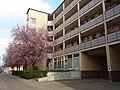 Große-Leege-Straße 68–82 gartenhöfe althohenschönhausen april2017 (9).jpg