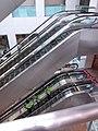 HK 上環 Sheung Wan 信德中心 Shun Tak Centre mall morning August 2019 SSG 76.jpg