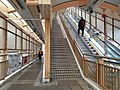 HK ML 半山區 Mid-levels 羅便臣道 Robinson Road escalators n footbridge February 2020 SS2 07.jpg