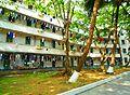 Hainan University - 10.jpg