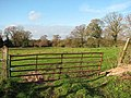 Hanging on - rusty gate into a pasture - geograph.org.uk - 1061439.jpg