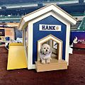 Hank in his new mobile Dog House 2014-04-26 08-27.jpg