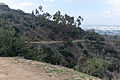 Hellman Park Whittier CA 6 Mariposa Trail view of Whittier CA.jpg