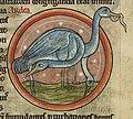 Herons eating eels - Bestiary (1230-1240), f.41 - BL Harley MS 4751.jpg