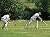 Hertfordshire County Cricket Club v Berkshire County Cricket Club at Radlett, Herts, England 004.jpg