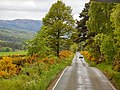 Highland - panoramio (7).jpg