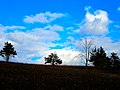Hilltop Prairie - panoramio (6).jpg