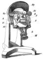 His 1870 Mikrotom (Bild 1).png